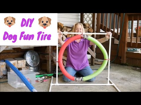 DIY Dog Agility Tire | Dog Agility Equipment DIY Easy Tire Jump