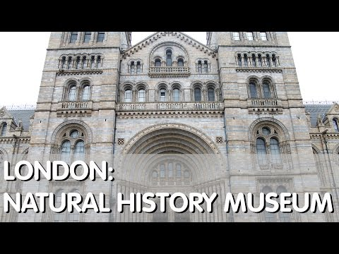 London: Natural History Museum & Gift Shop