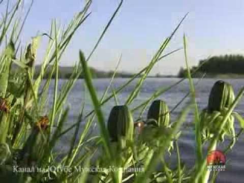 Рыбалка в Вологодской области
