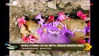 VIRAL! Anjing Ditembak Secara Brutal dengan Senapan Angin di Tangreang - Police Line 15/08
