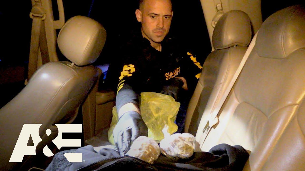 Download Live PD: Cop Calls w/ Pasco County, FL | A&E