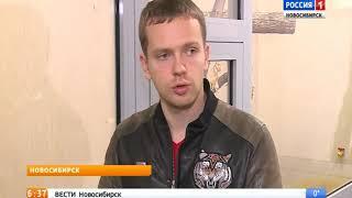 Редкие золотистые кошки поселились в Новосибирском зоопарке