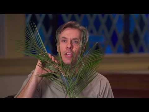 46 | Palm Sunday -- Chuck Knows Church