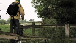 Ben Howard, Follaton Wood