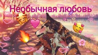 Необычная любовь 1серия Wildcraft