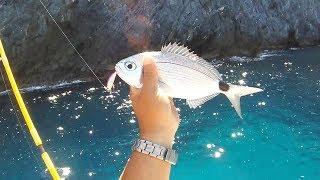 Ψάρεμα μελανουριών με Light Spinning με Tetra Works TOTO 42 της DUO