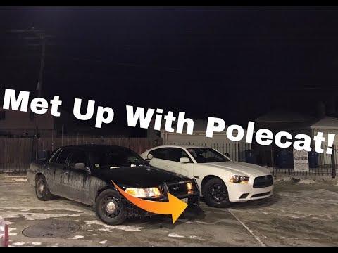 Met Up With Polecat