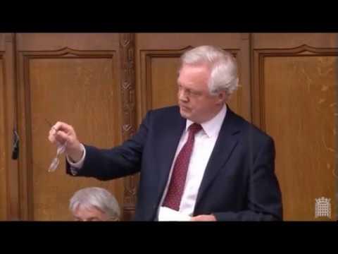 David Davis: 'The EU is slow and ineffective at negotiating trade deals'