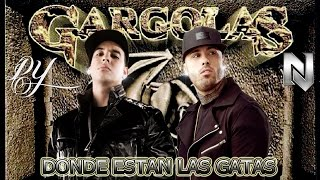 Watch music video: Daddy Yankee - Donde Estan Las Gatas