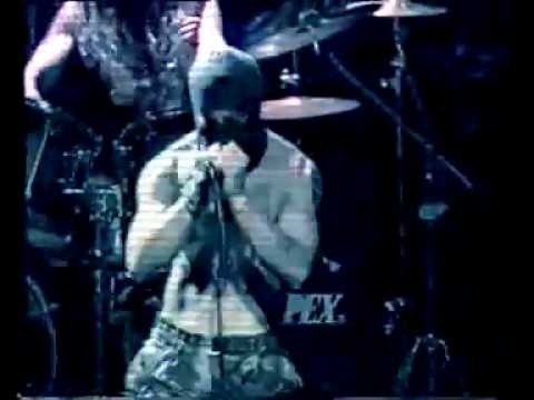 TERRORIST-ANTHEM OF HATE (DEATH METAL VIDEO)