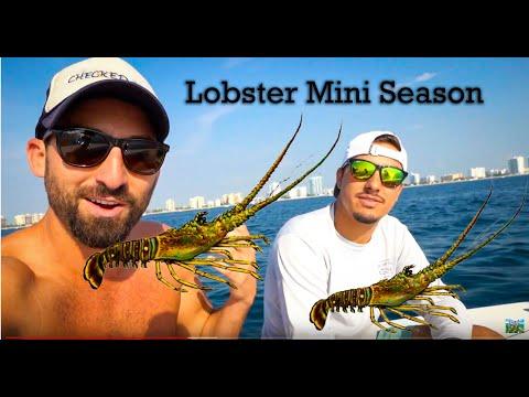 lobster-mini-season-2019