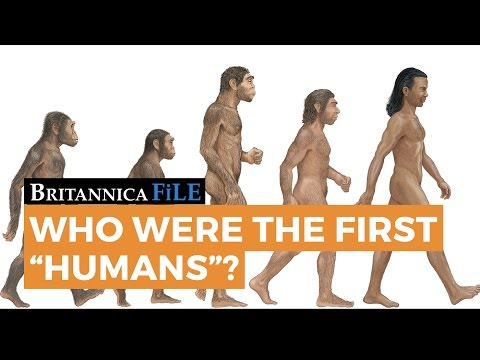 Britannica File: Who were the first humans?