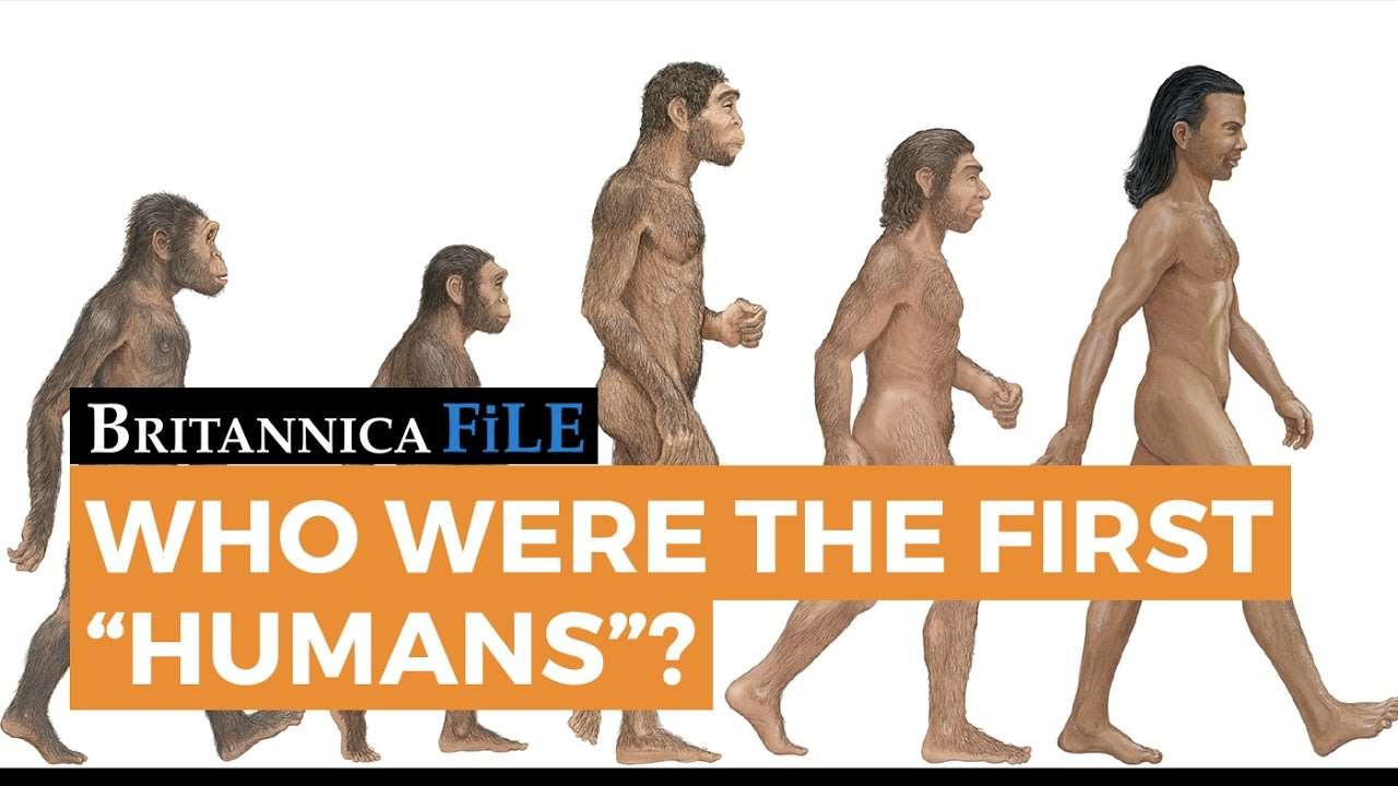 BRITANNICA FILE: Who were the first humans? | Encyclopaedia Britannica