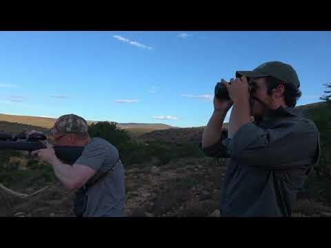 Hunting in Africa,  Waterbuck at Tollies African Safaris