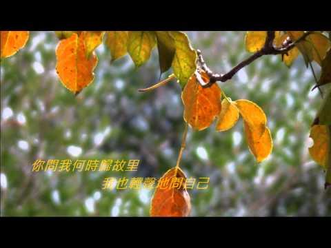 音樂磁場-大約在冬季, Taiwan