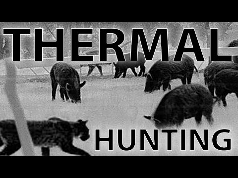 Best Thermal Night Hunting Videos With The Trijicon REAP-IR | 48 Hogs Down