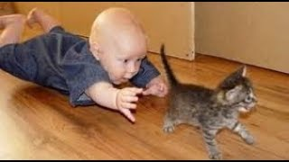 👶🏻🐱Funny Babies Laughing at Cats Compilation 2018  Cats Loves Babies Video 👶🏻🐱
