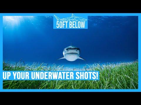 3 Underwater Photography Tips   Make Better Underwater Photos