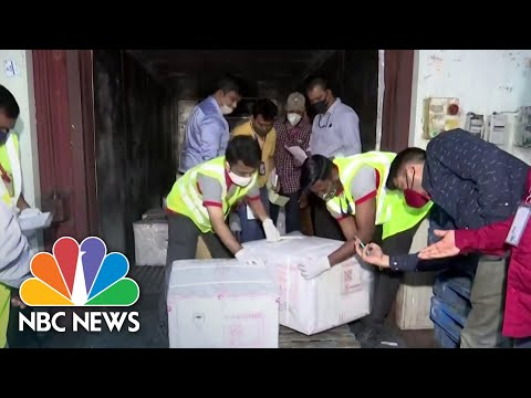 Pfizer To Supply Doses To World Health Org., India To Begin Vaccine Exports | NBC News NOW