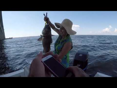 Mid-bay Bridge Fishing Trip Destin Fl