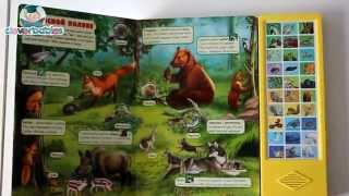 Азбукварик. Мир животных и растений. Видео-обзор