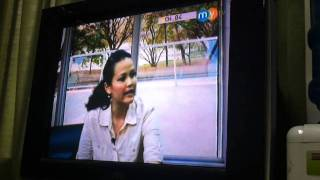 Siberian Husky Club Of Cebu On Mytv