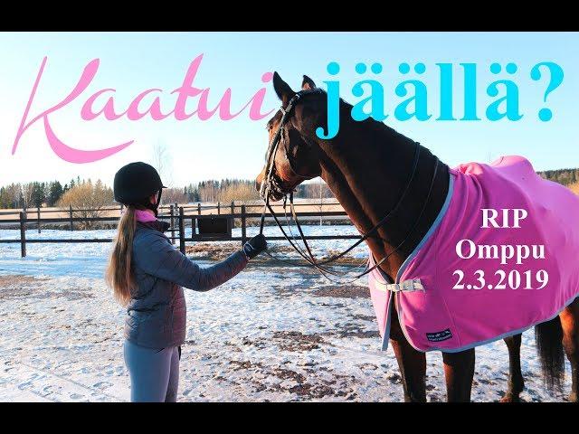 HYVÄSTI OMPPU   story time