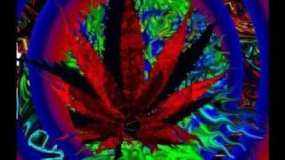 TOM NOVY N VIRGINIA -SMOKE DIS 1