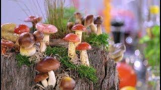 5 нескучных способов приготовить грибы