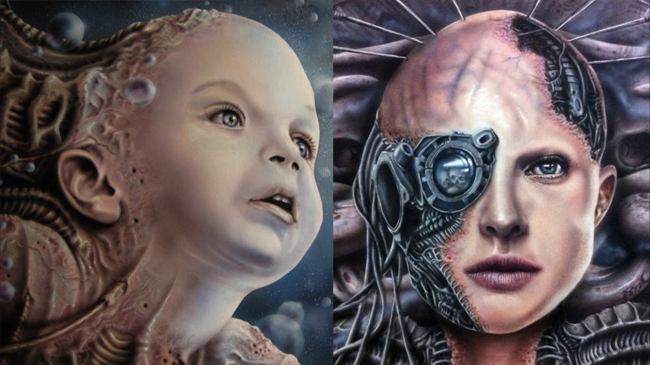Origin of the Borg , Immortality , Borg Babies , Collective vs Borg Queen -  Star Trek Theory - YouTube