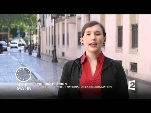IMMOBILIS EXPERTISE - Antoine MICHON - Télé-Matin 28 Juillet 2011