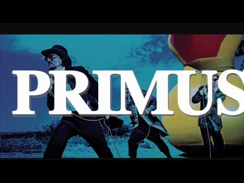 Top 5 Primus Songs Part 1
