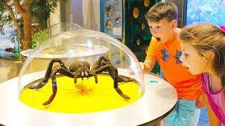Адриана и Али играют в музее науки в Дубай, видео для детей