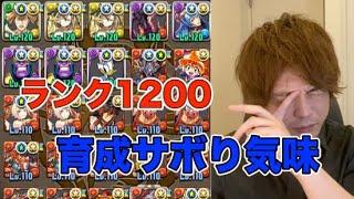 【パズドラ】ランク1200なりたてのBOX【コスケ】
