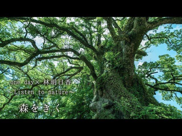 【新プロジェクトMV公開】one day×林明日香 〜Listen to nature〜