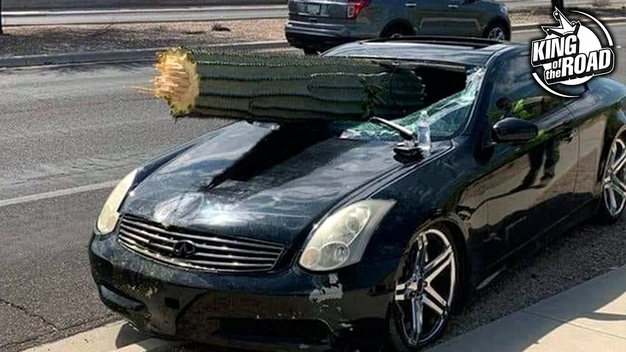 Comment ne pas conduire votre voiture / CAR FAILS / Idiots in cars # 5 décembre 2019 + vidéo