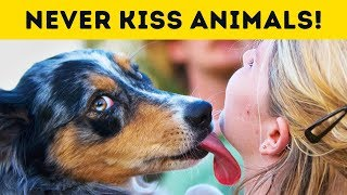 Why You Should Never Kiss Your Pet