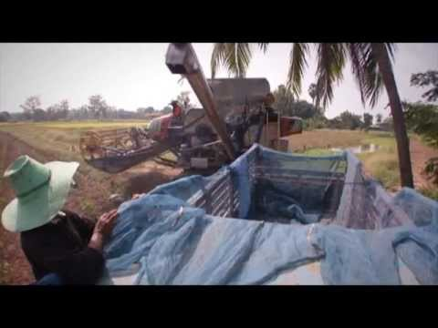 เครื่องจักรกลเกษตรไทย   คว้ารางวัล Bai Po Business Awards by Sasin