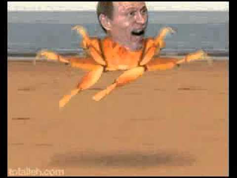 Putin crab gif