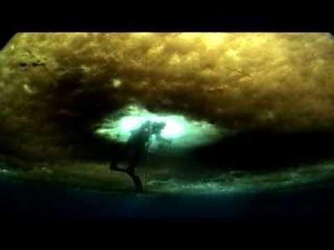 Werner Herzog's Wild Blue Yonder