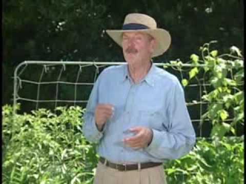 Mel Bartholomew   Introducing Square Foot Gardening   YouTube