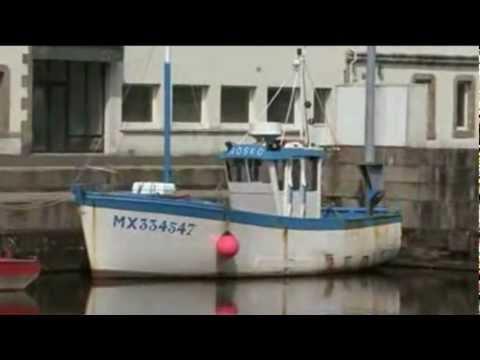 clip vidéo - Tri Martolod -