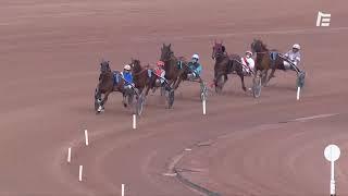 Vidéo de la course PMU PRIX D'ARGENTAN