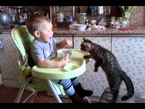 Baby Shows Off His Sharing Skills by Giving Some of His Milk to a Kitten