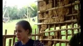 As Aventuras de Pedro Malazartes - O Urubu, a Bahiana e o Amante