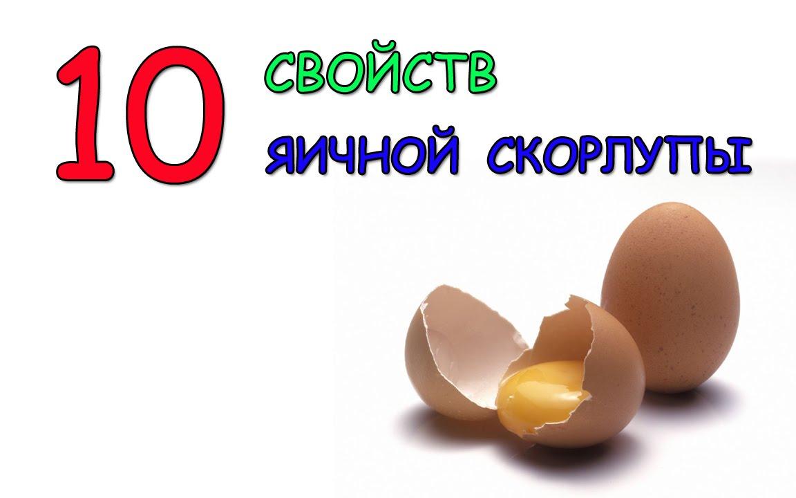 яичная скорлупа здорово жить
