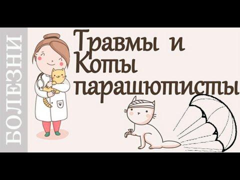 Вывих - симптомы, первая помощь, причины, виды