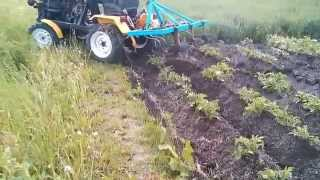 Repeat youtube video Traktorek SAM SAPARD obradlanie ziemniaków 2015