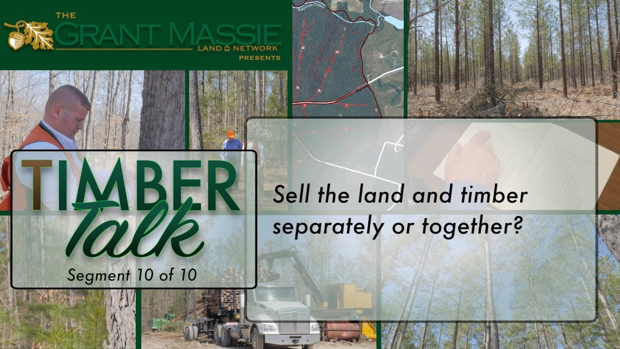 Timber Talk:  Sell the Land and Timber Separately or Together? (10 of 10)
