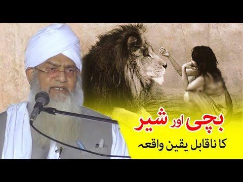 Unbelievable Story of Lion and a child - Peer Zulfiqar Naqshbandi - شیر اور بچی کا واقعہ